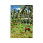 Horse in a Tropical Pasture Rectangle Magnet