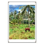 Horse in a Tropical Pasture Banner
