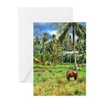 Horse in a Tropical Pasture Greeting Cards (Pk of