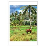 Horse in a Tropical Pasture Large Poster