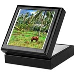 Horse in a Tropical Pasture Keepsake Box