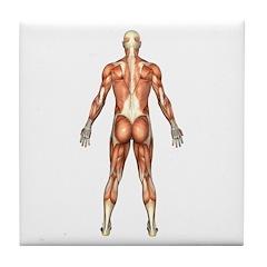 Visible Man Back Tile Coaster