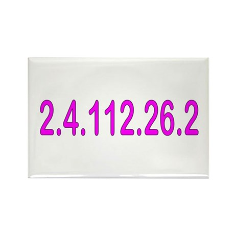 2.4.112.56.2 Blue and Pink Rectangle Magnet