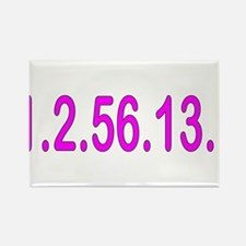 1.2.56.13.1 Rectangle Magnet