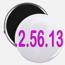 1.2.56.13.1 Magnet
