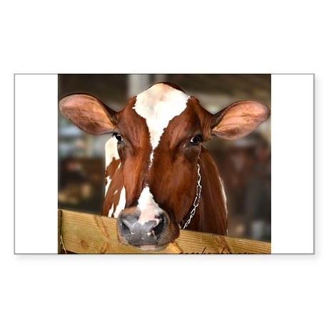Cow 1 Sticker (Rectangle)