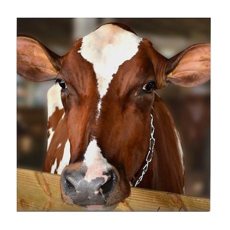 Cow 1 Tile Coaster