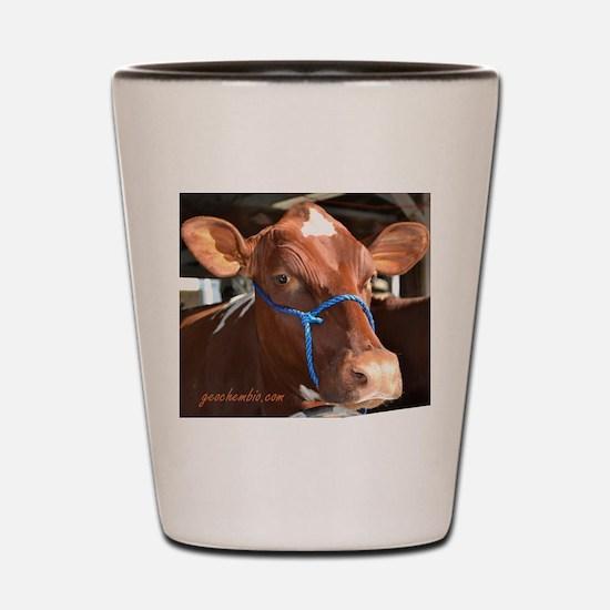 Cow 2 Shot Glass