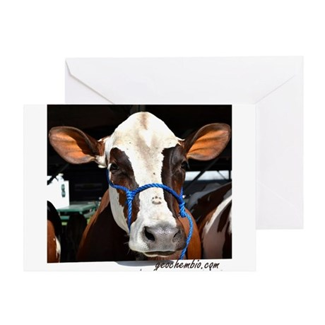 Cow 3 Greeting Card