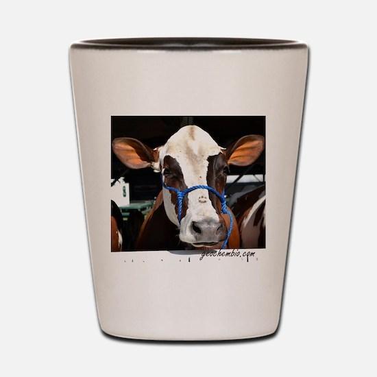 Cow 3 Shot Glass