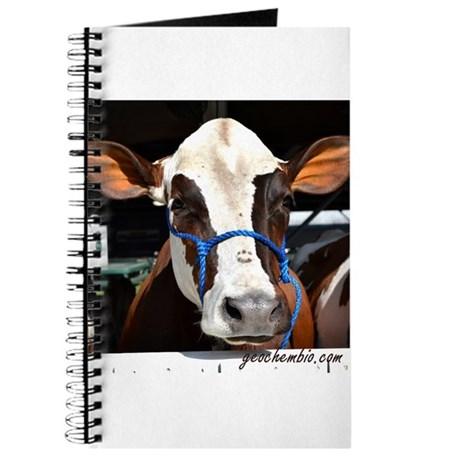 Cow 3 Journal