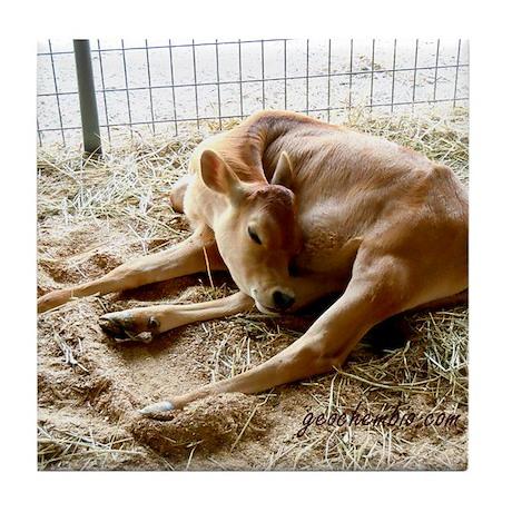Sleeping calf Tile Coaster