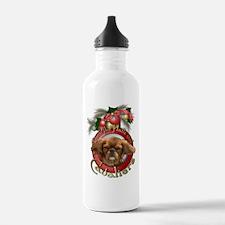 Christmas - Deck the Halls - Cavaliers Water Bottle