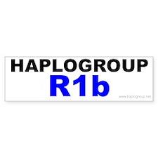 Haplogroup R1B Bumper Bumper Sticker