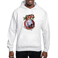 Christmas - Deck the Halls - Bedlingtons Jumper Hoody
