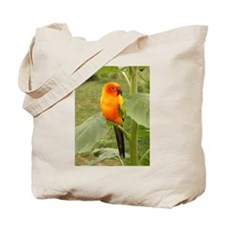 Cute Sun perch Tote Bag
