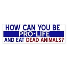 How can you be pro life...Bumper Car Sticker