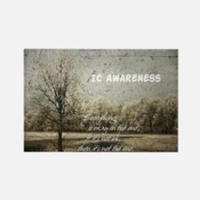 the end ic awareness Magnets