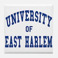East harlem Tile Coaster