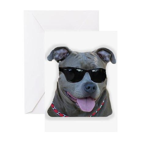 Pitbull in sunglasses Greeting Card
