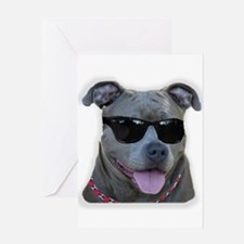 Pitbull in sunglasses Greeting Card