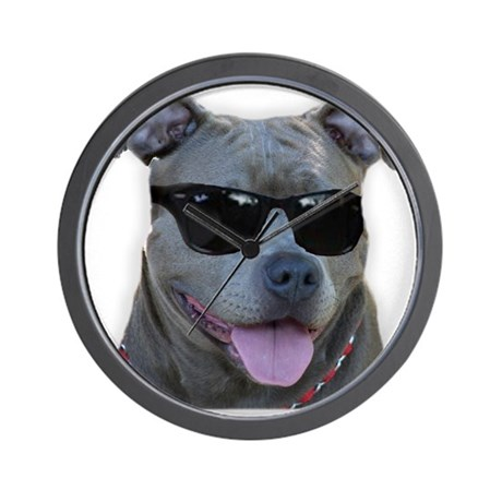 Pitbull in sunglasses Wall Clock