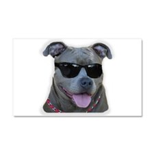 Pitbull in sunglasses Car Magnet 20 x 12