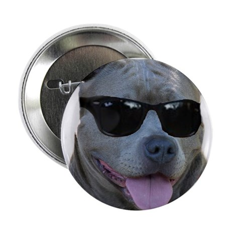 "Pitbull in sunglasses 2.25"" Button (10 pack)"