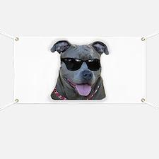 Pitbull in sunglasses Banner