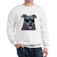 Pitbull in sunglasses Sweatshirt
