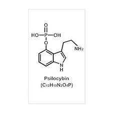 Psilocybin Rectangle Decal