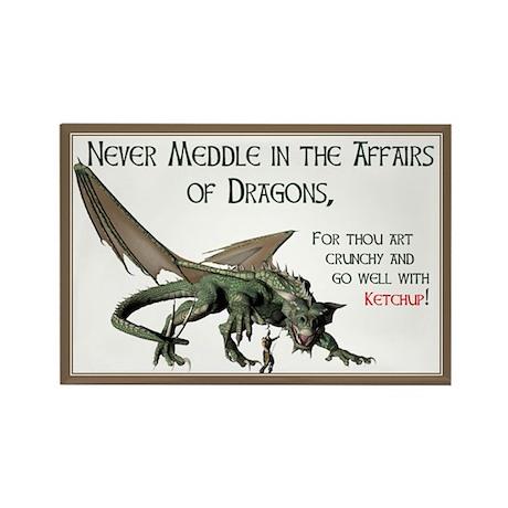 Dragon Affairs Magnets