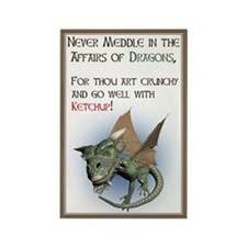 Cute Meddle affairs dragons Rectangle Magnet