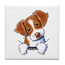 Pocket Brittany Tile Coaster