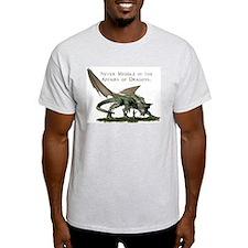 Cute Meddle affairs dragons T-Shirt