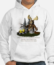 Funny I love camping Hoodie