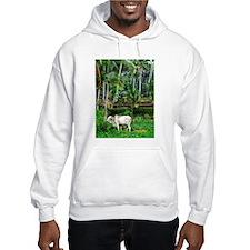 Rich Pasture Hoodie