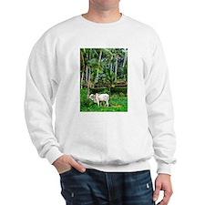 Rich Pasture Sweatshirt