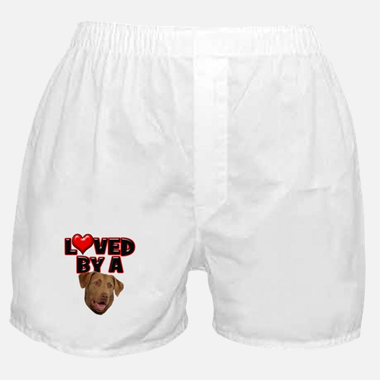 Loved by a Chesapeake Bay Ret Boxer Shorts