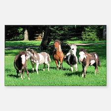 Foals on the Run Sticker (Rectangle)