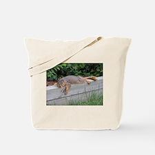Laying squirrel Tote Bag