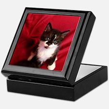 Unique Cat head Keepsake Box