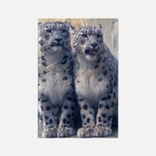 Twin Snow Leopard cubs Rectangle Magnet