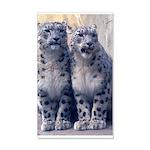 Twin Snow Leopard cub 22x14 Wall Peel