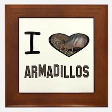 Unique Armadillos Framed Tile