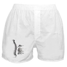 spine Boxer Shorts