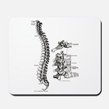 spine Mousepad