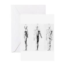 full body anatomy Greeting Card