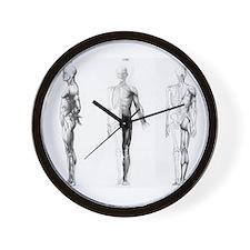full body anatomy Wall Clock