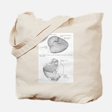 Grays Anatomy heart Tote Bag